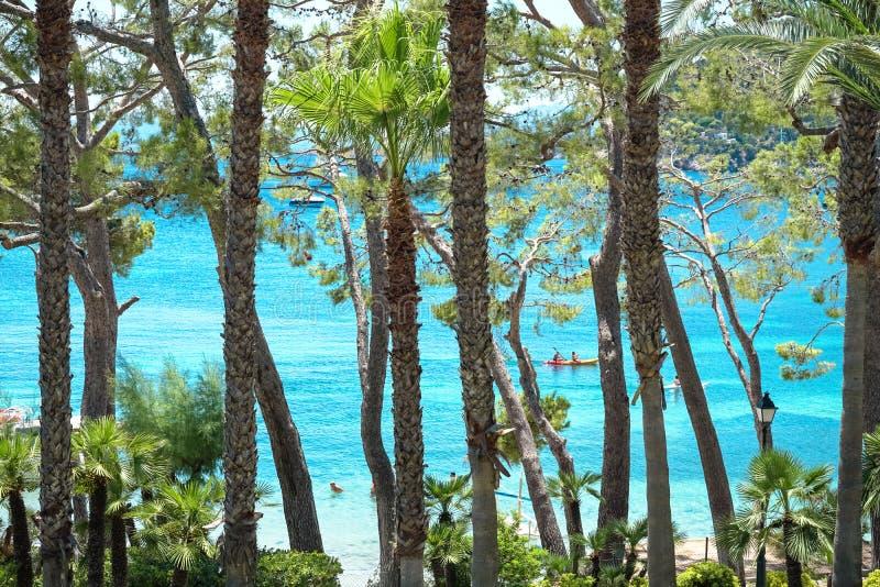 Playa de Formentor Cala Pi de la Posada, praia bonita no tampão Formentor, Palma Mallorca, Espanha imagens de stock royalty free