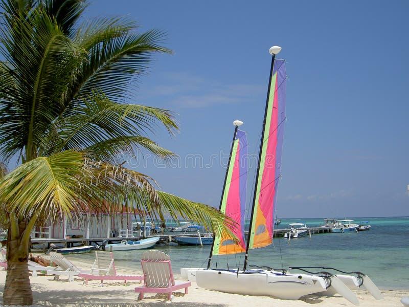 Playa de Hobie fotos de archivo