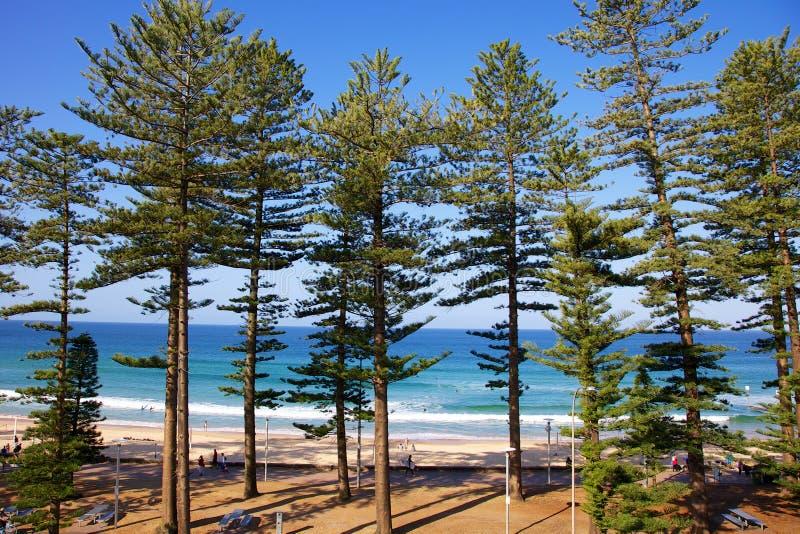 Playa de hombres Australia imagenes de archivo