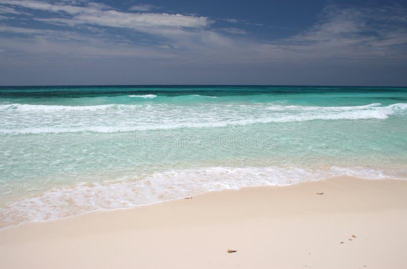 Playa de Isla Cozumel fotografía de archivo