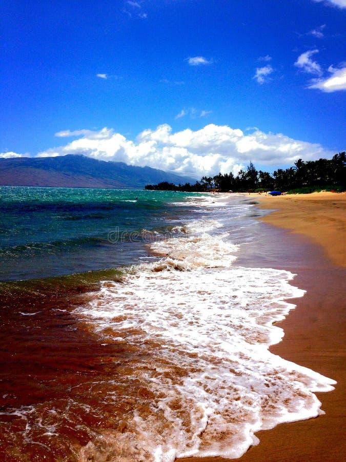 Playa de Kama'ole imagen de archivo libre de regalías