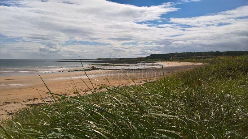 Playa de Kingsbarns foto de archivo libre de regalías