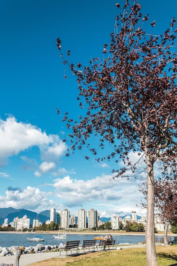 Playa de Kitsilano en Vancouver, Canadá fotografía de archivo libre de regalías