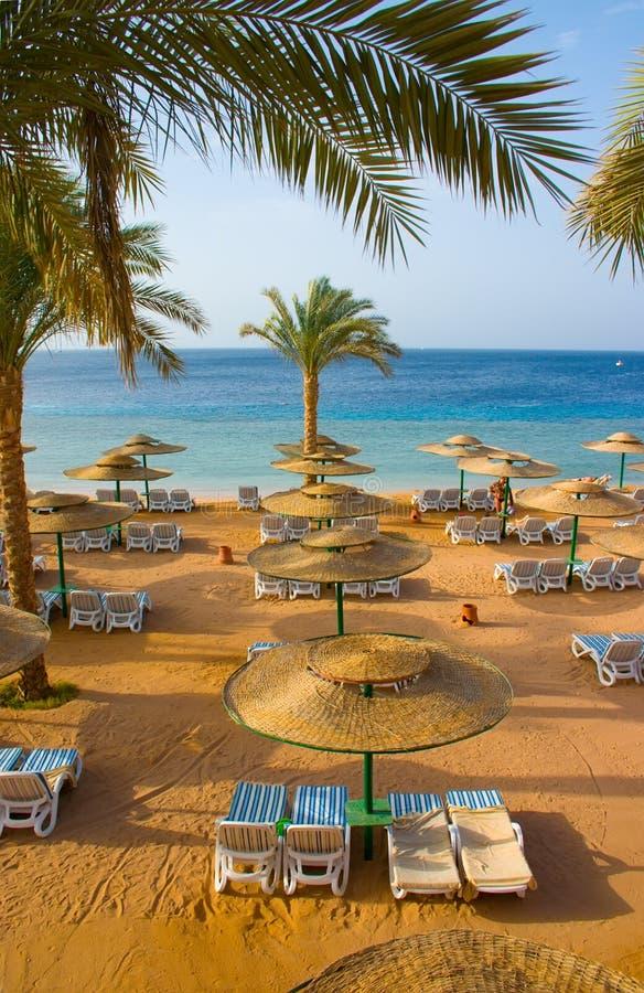 Playa de la arena del hotel tropical foto de archivo libre de regalías