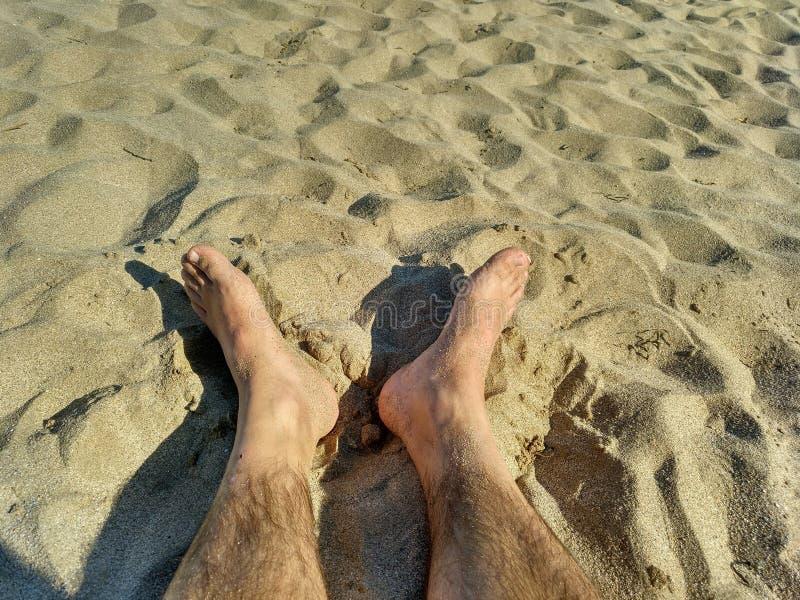 Playa de La d'en de tartes photographie stock libre de droits