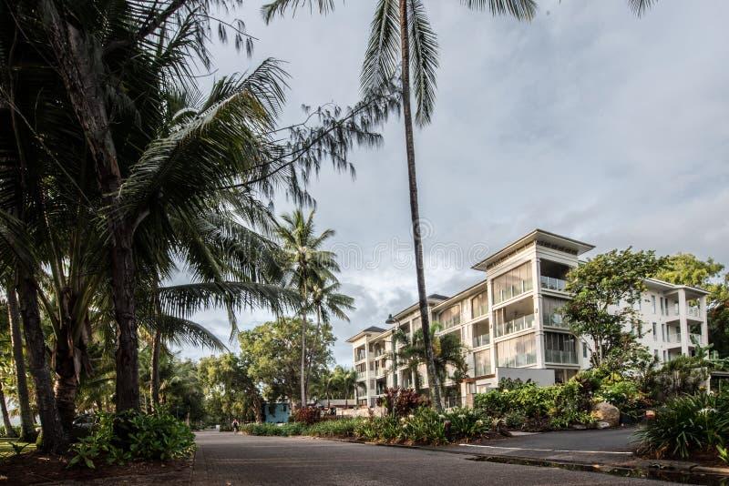 Playa de la ensenada de la palma en la salida del sol con las palmeras imágenes de archivo libres de regalías