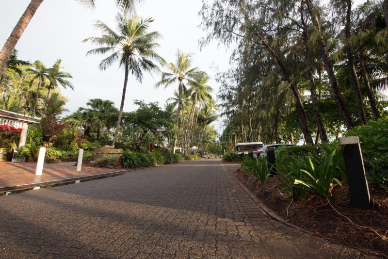 Playa de la ensenada de la palma en la salida del sol con las palmeras imagen de archivo
