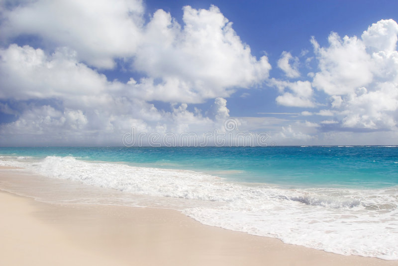 Playa de la grúa fotografía de archivo libre de regalías
