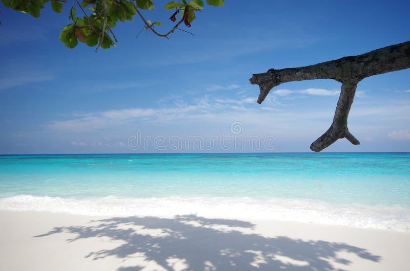 Playa de la isla y cielo azul fotos de archivo
