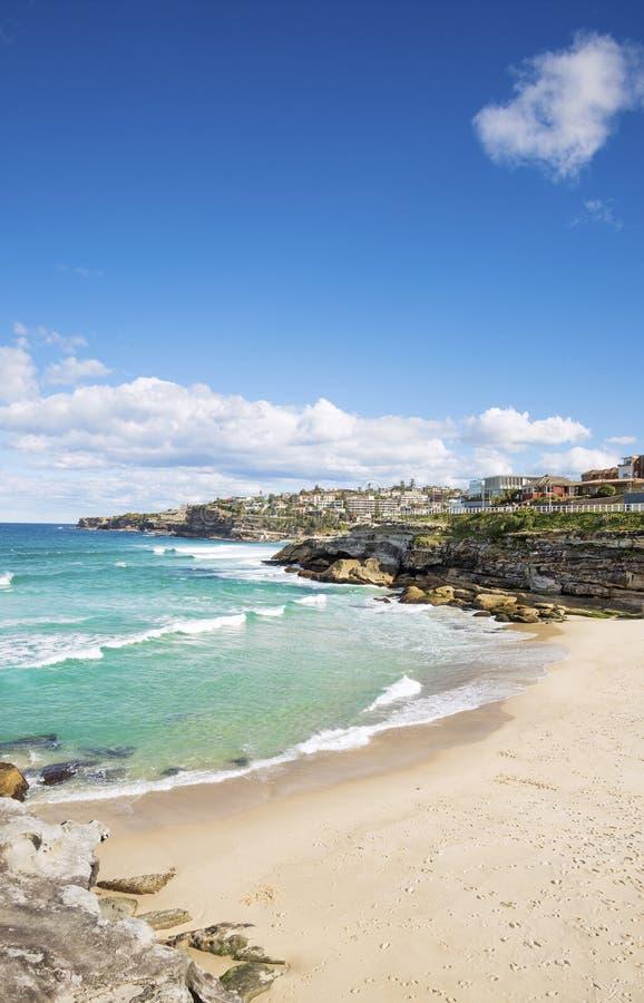 Playa de la playa de Tamarama en Sydney Australia foto de archivo libre de regalías