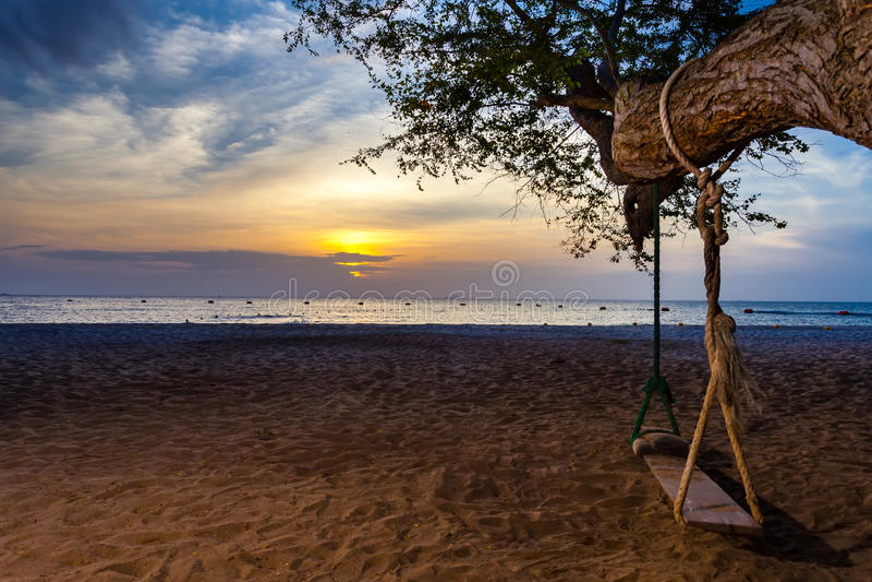 Playa de la puesta del sol con el oscilación y el árbol fotos de archivo libres de regalías