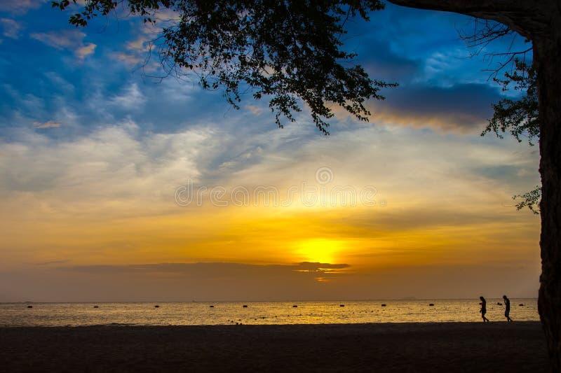 Playa de la puesta del sol y árbol y gente foto de archivo libre de regalías