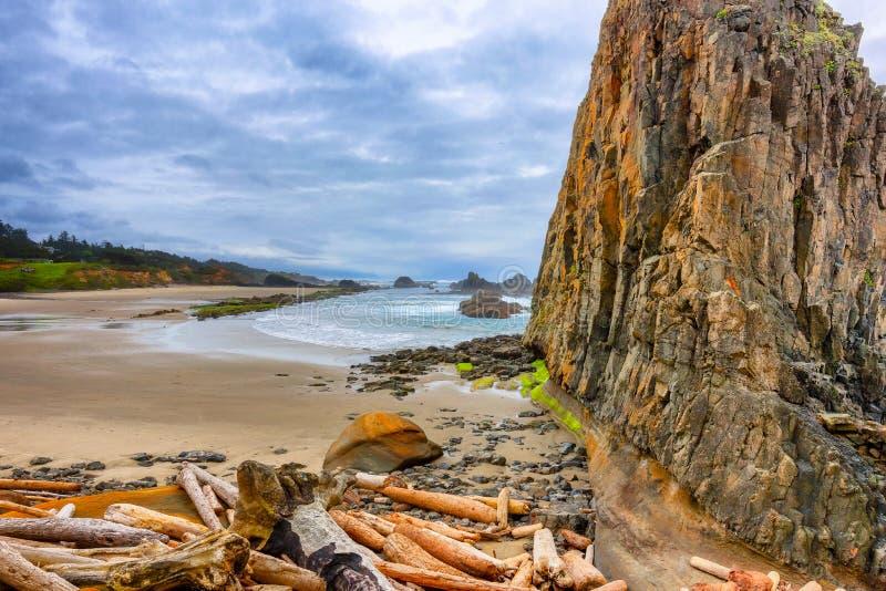 Playa de la roca del sello en la costa de Oregon fotografía de archivo libre de regalías