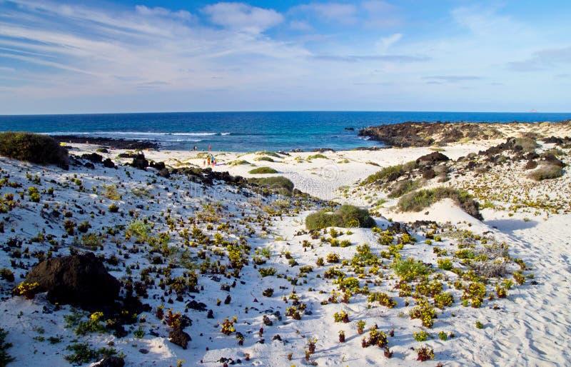 Playa de Lanzarote foto de archivo libre de regalías