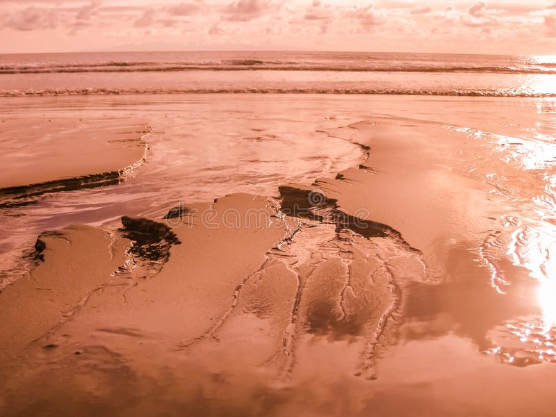 Playa De-las Amerika purpurrot stockbild