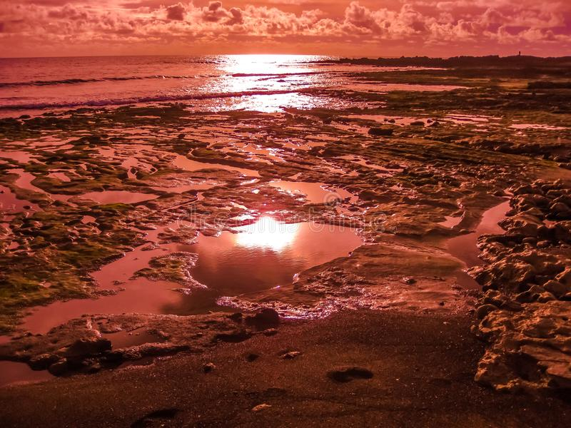 Playa De-las Amerika rot lizenzfreie stockfotos