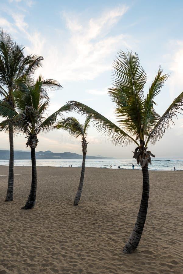 Playa de Las Canteras - playa hermosa en Las Palmas de Gran Canaria imagen de archivo