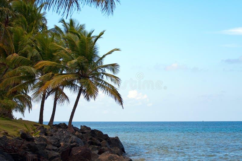 Playa de Luquillo en Puerto Rico fotografía de archivo libre de regalías