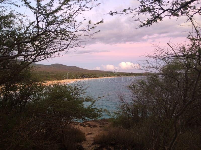 Playa de Maui en la puesta del sol foto de archivo libre de regalías