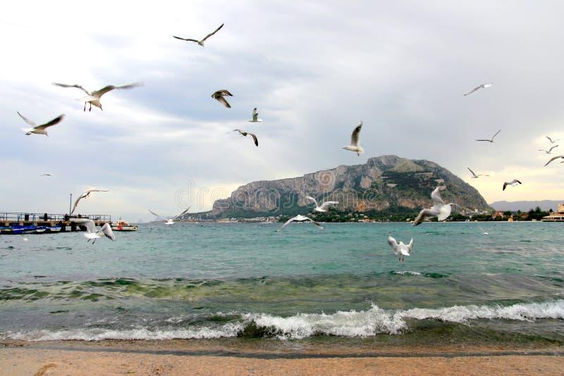 Playa de Mondello en invierno imágenes de archivo libres de regalías