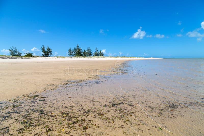 Playa de Mozambique fotos de archivo libres de regalías