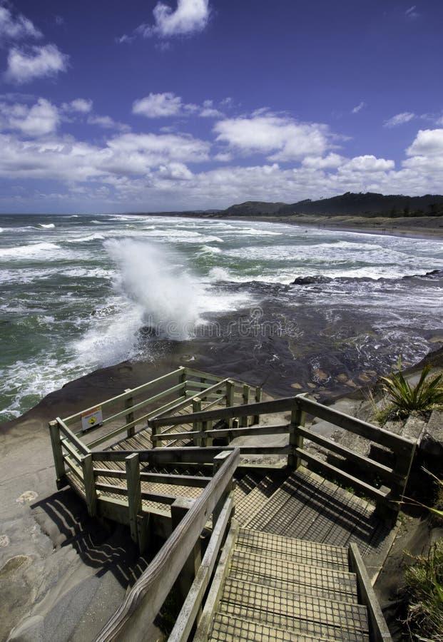 Playa de Muriwai de la colonia de Gannet cerca de la playa de la arena del negro de Auckland fotografía de archivo