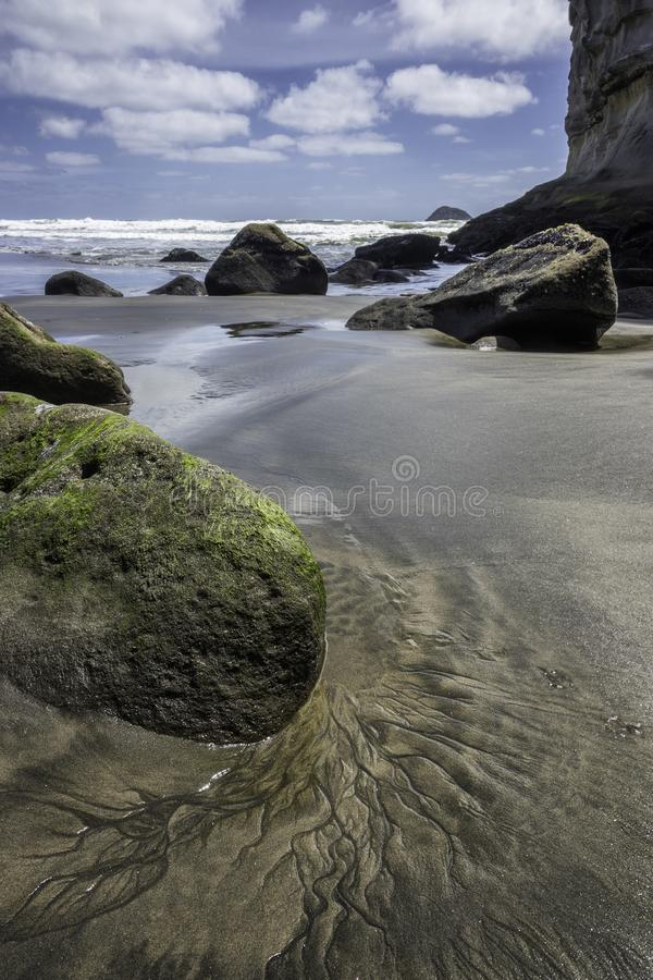 Playa de Muriwai de la colonia de Gannet cerca de la playa de la arena del negro de Auckland foto de archivo libre de regalías