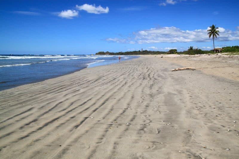 Playa de Nosara, Costa Rica foto de archivo libre de regalías