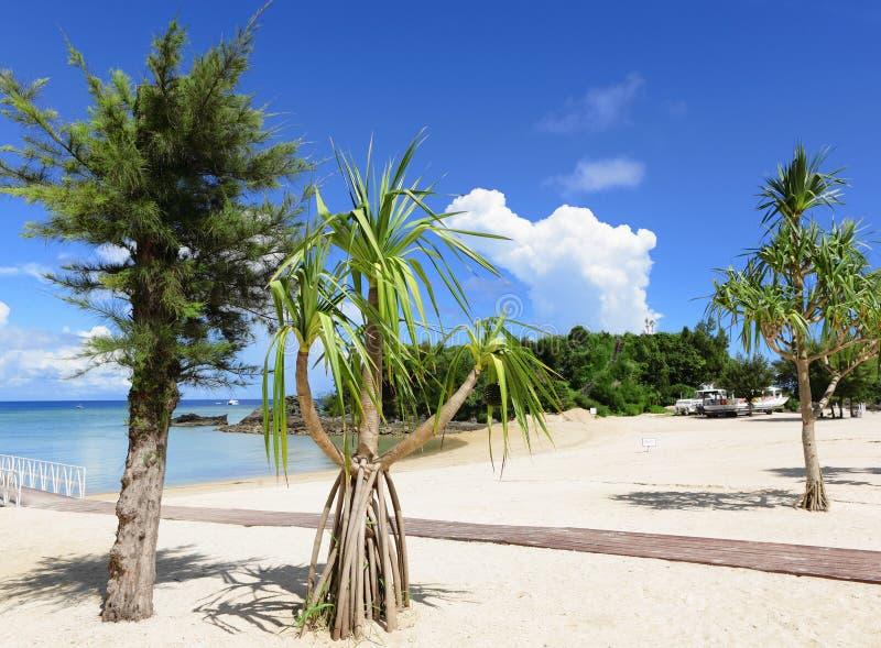 Playa de okinawa fotografía de archivo
