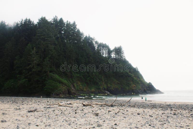 Playa de Oregon en la costa fotos de archivo