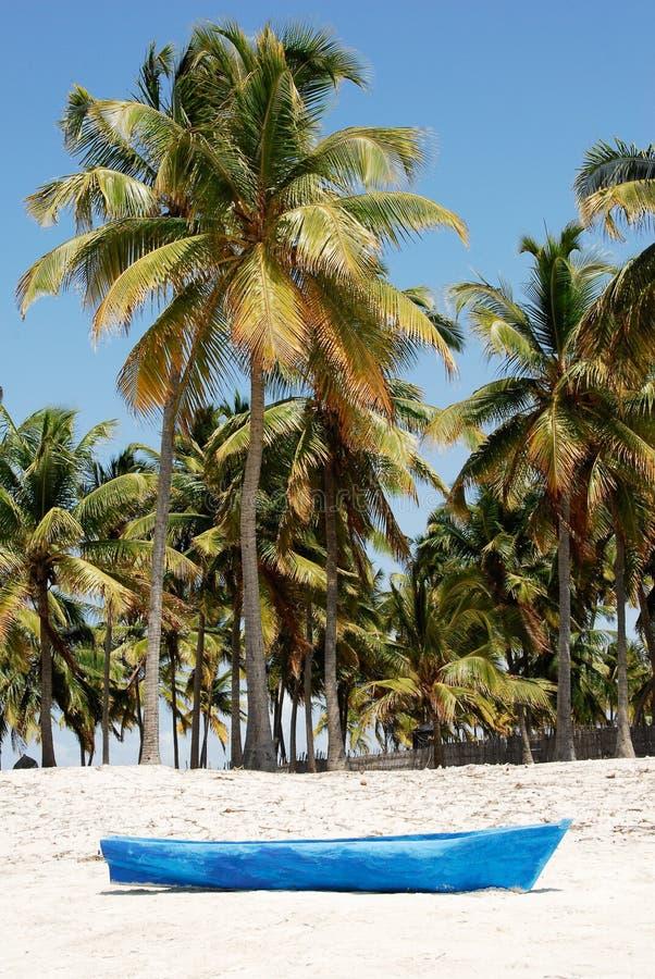 Playa De Pangane, Mozambique Fotos de archivo libres de regalías