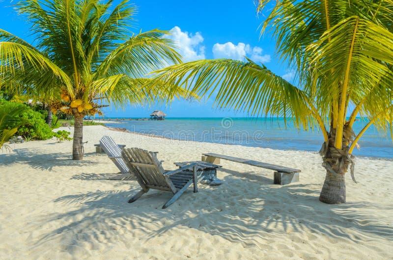 Playa de Paradise en Placencia, costa tropical de Belice, mar del Caribe, America Central fotografía de archivo