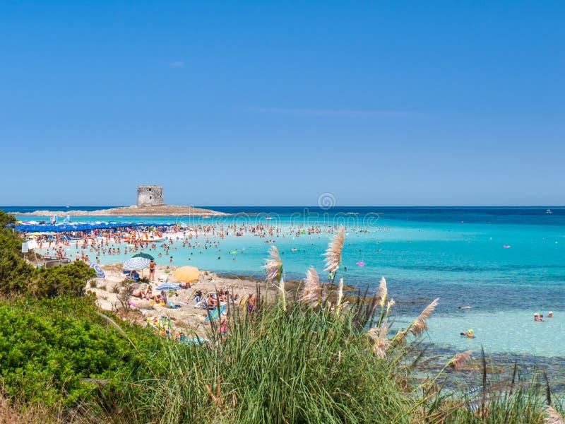 Playa de Pelosa del La del verano en Cerdeña fotografía de archivo libre de regalías