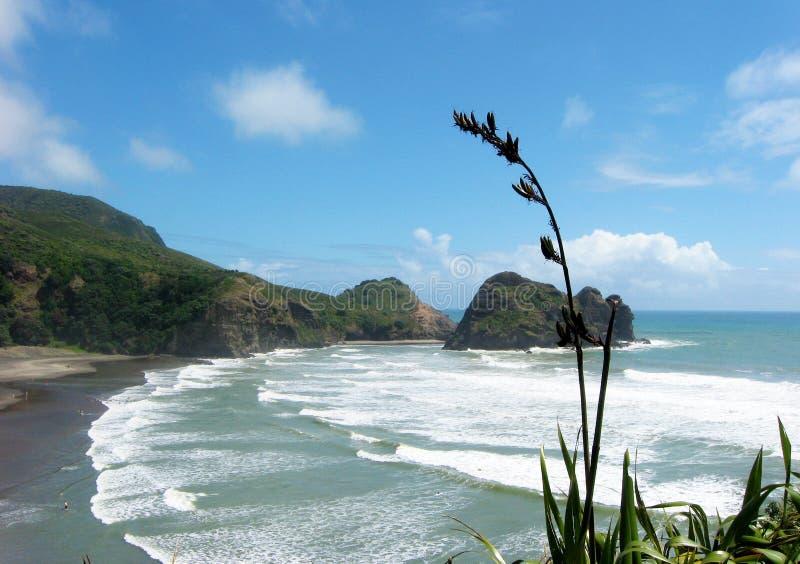 Playa de Piha de la roca Nueva Zelanda del león imagen de archivo libre de regalías