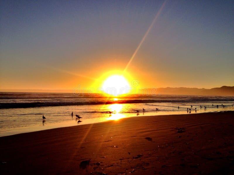 Playa de Pismo fotos de archivo libres de regalías