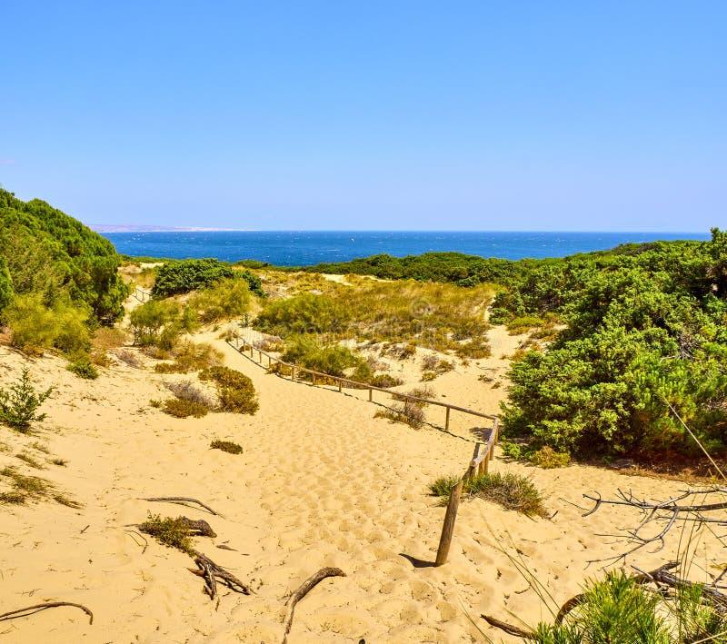 Playa de Punta Paloma Tarifa, C?diz, Andaluc?a, Espa?a imágenes de archivo libres de regalías