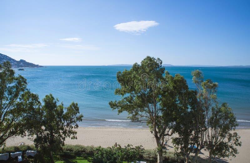 Playa de Salata, rosas imagen de archivo libre de regalías
