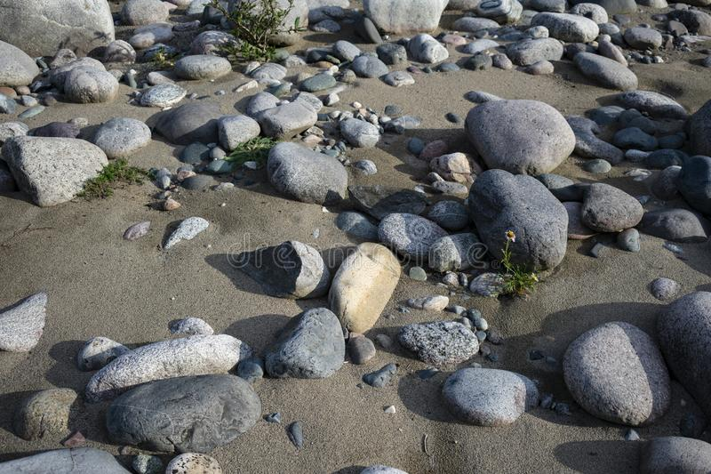 Playa de Sandy con los cantos rodados grandes foto de archivo libre de regalías