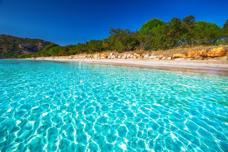 Playa de Santa Giulia con agua clara azul, Córcega, Francia foto de archivo