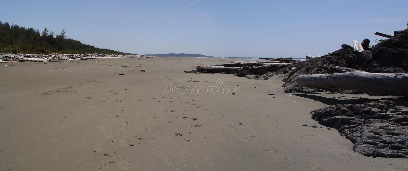 Playa de Tofino foto de archivo libre de regalías