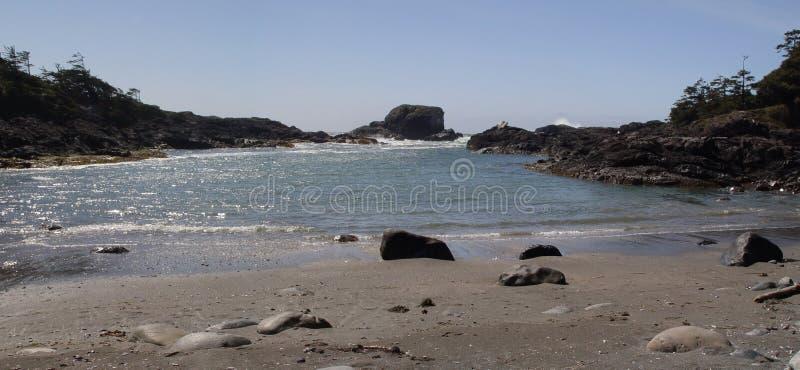 Playa de Tofino imagenes de archivo