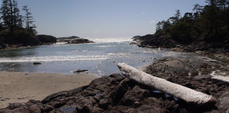 Playa de Tofino imagen de archivo libre de regalías