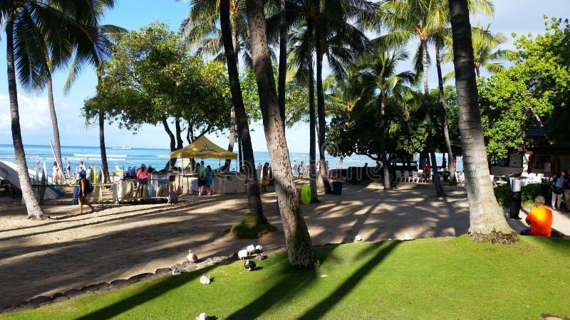 Playa de Waikiki en Hawaii fotografía de archivo libre de regalías