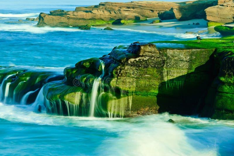 Playa de Windansea foto de archivo