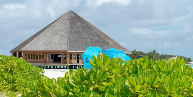 Playa del arena de mar en la isla de Meeru, Maldivas mayo de 2017 imagen de archivo