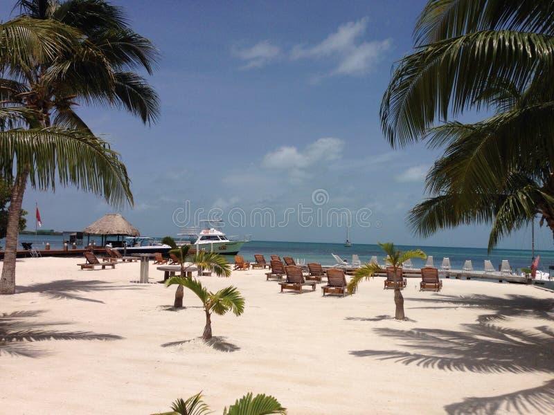 Playa del calafate de Caye fotos de archivo libres de regalías