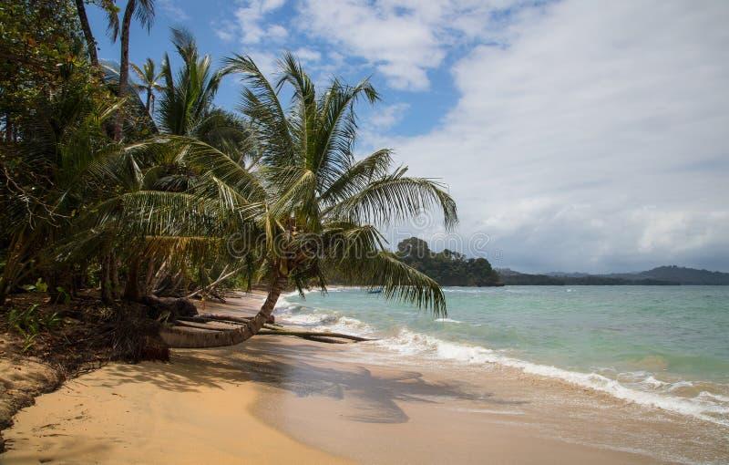Playa del Caribe hermosa en Costa Rica foto de archivo libre de regalías