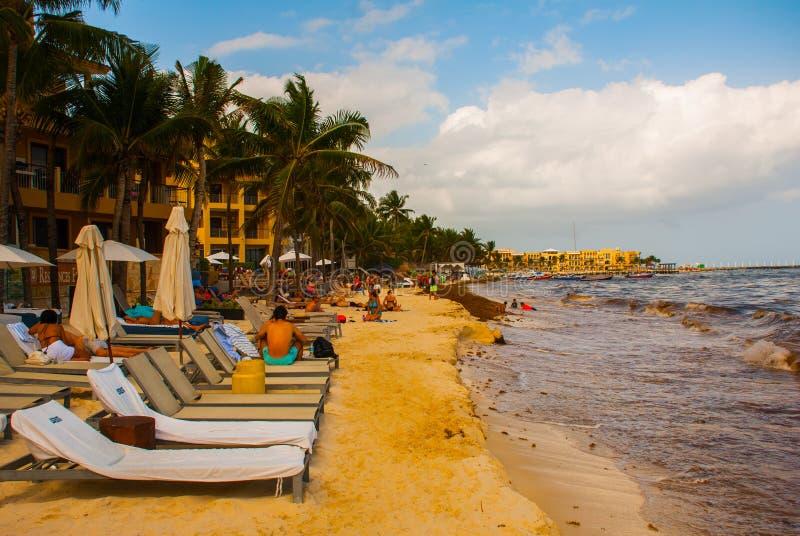 Playa del Carmen, Мексика, Юкатан, Майя Ривьеры: Ужасный пакостный пляж с грязью, морской водорослью и отбросом стоковые изображения rf
