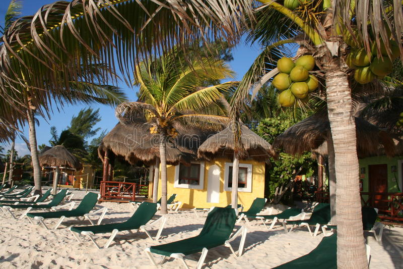 Download Playa Del Carmen Beach In Mexico Stock Photo - Image: 18546754