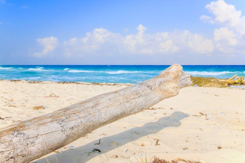 Playa Del Carmen beach, Mexico royalty free stock images